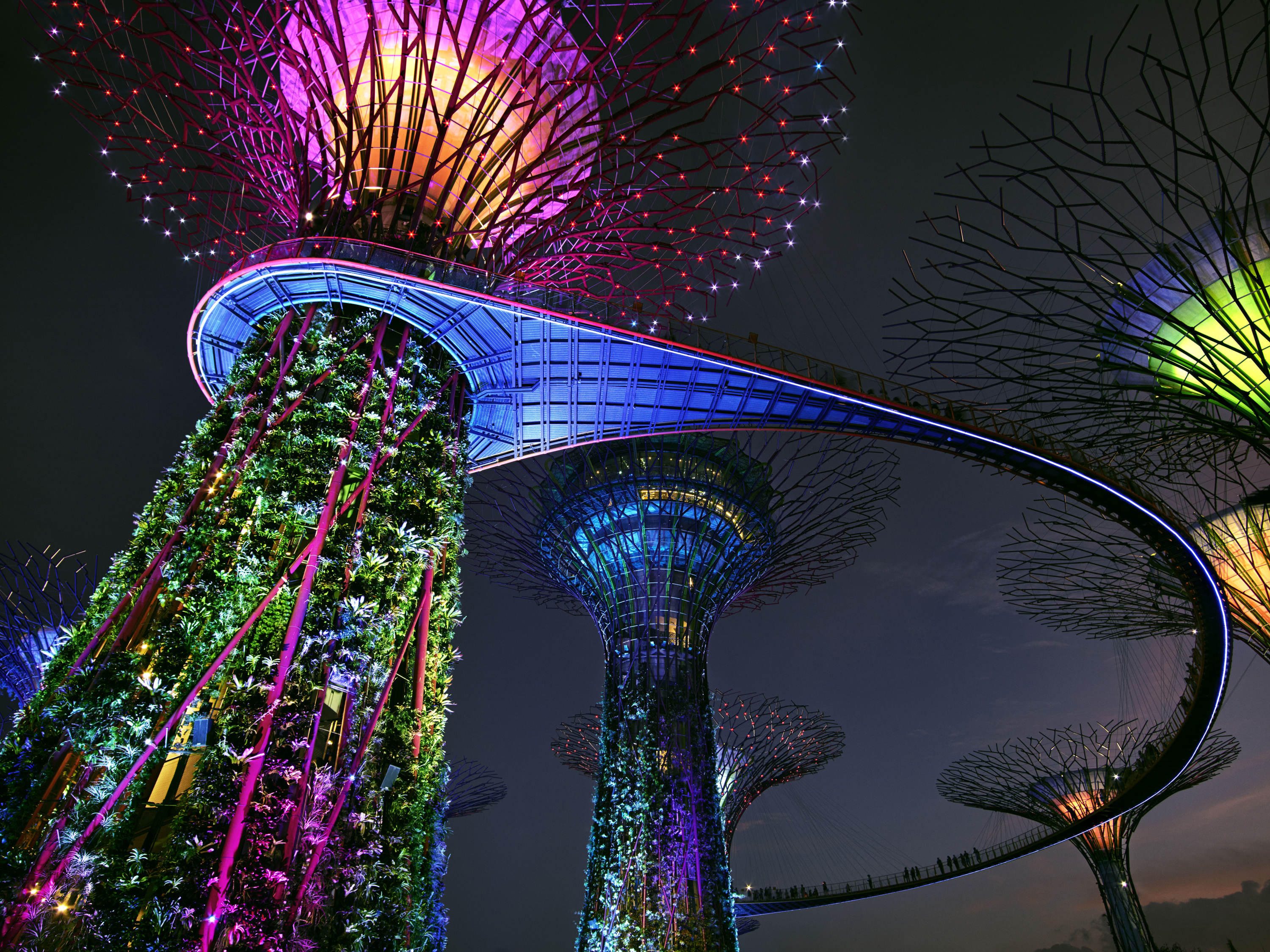 Garden by the bay_v1